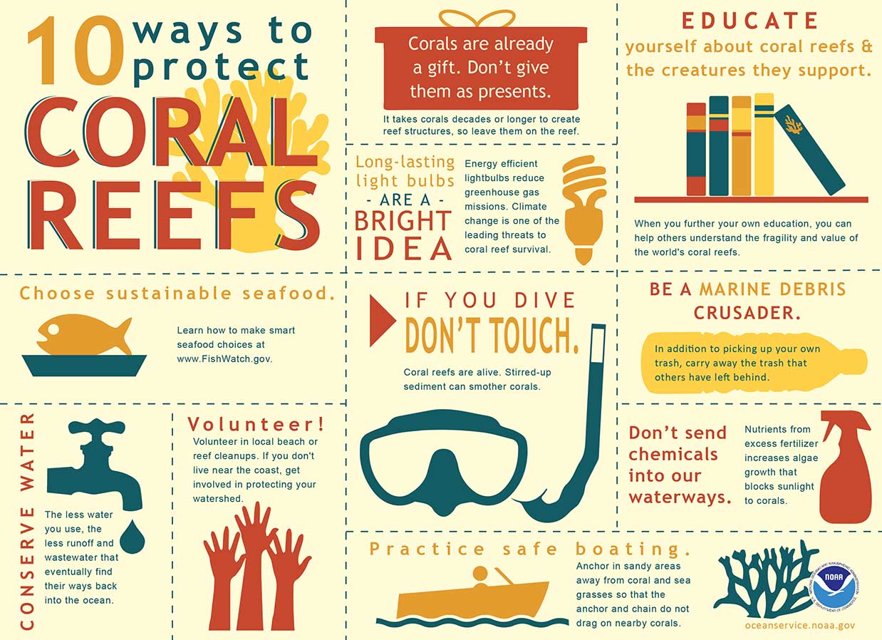 Infographic: 10 Ways to Protect Coral Reefs by NOAA