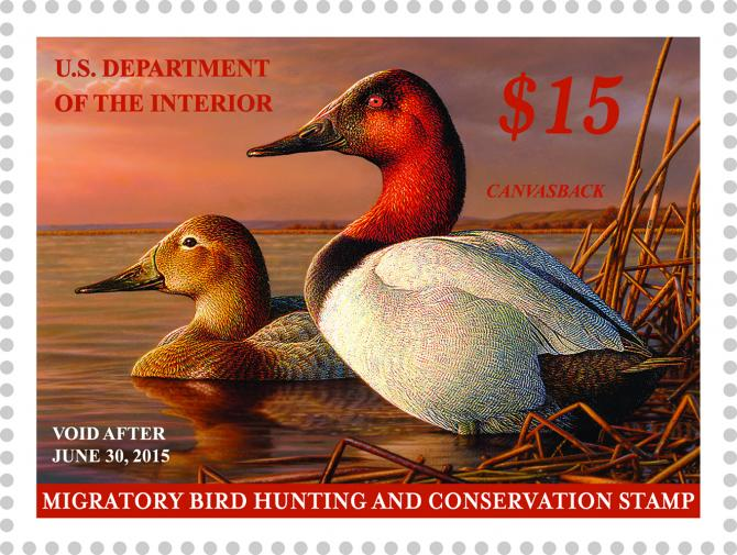 federal-duck-stamp