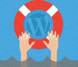 OmniStudio Blog WordPress Security Website Threats Web Hacking