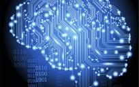 data-brain