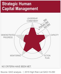 Strategic Federal Human Capital Management