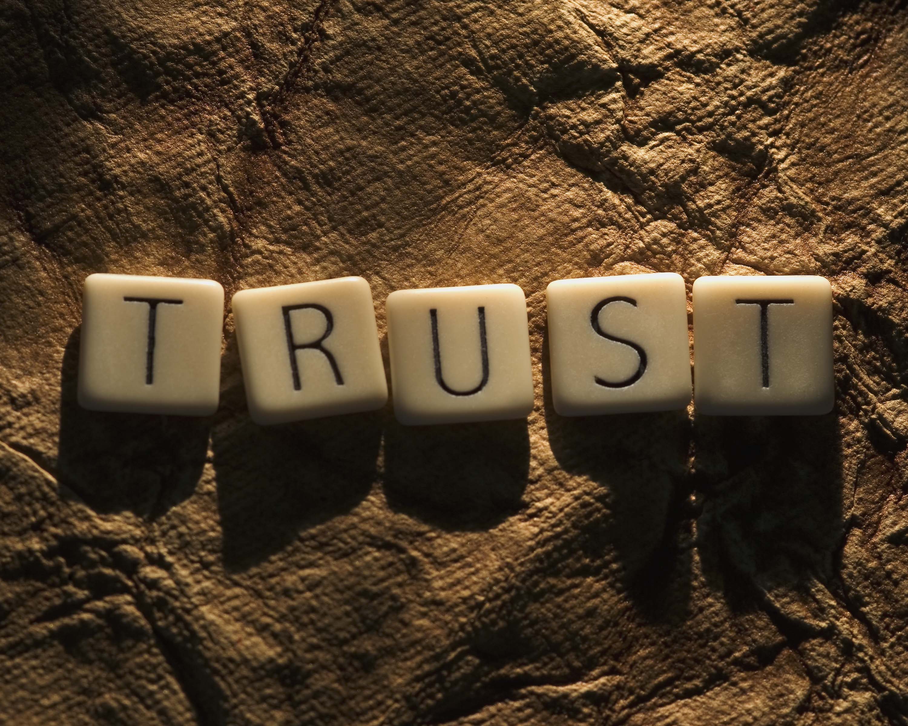 Image result for trust