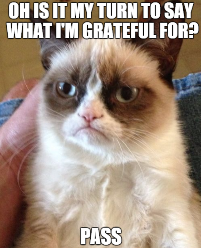 grateful-pass-grumpy-cat