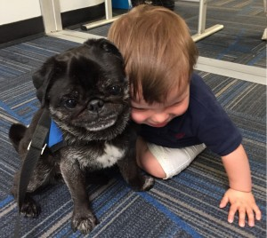Pudge gets a hug from a young traveler