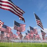 image thumbnail link to Memorial Day: What Are We Remembering and Why?