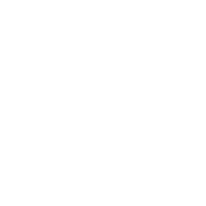 11_govloop_icon_white