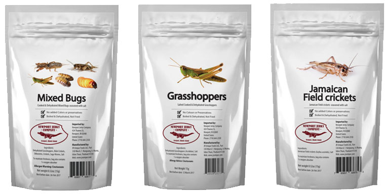 holiday gift ideas Bag of Bugs