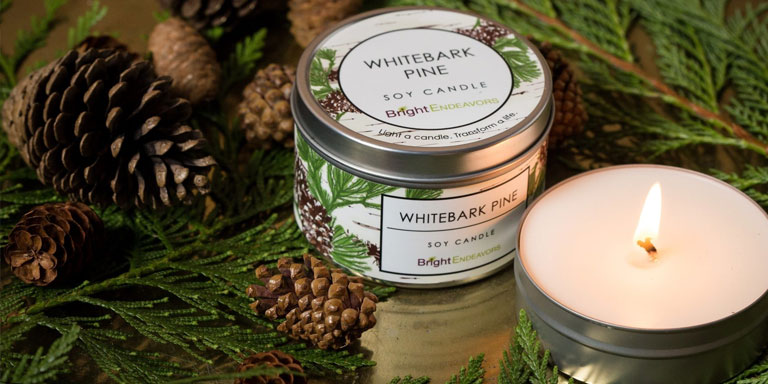 holiday gift ideas Bright Endeavors candles