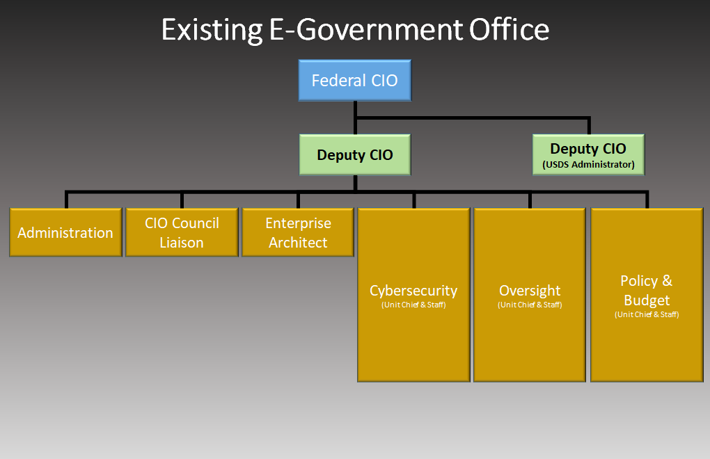 An org chart of the OMB Office of E-Government and Information Technology