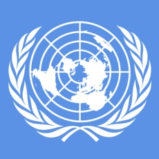 Group logo of The United Nations