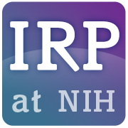 Group logo of Intramural Research Program (IRP) at the National Institutes of Health (NIH)