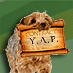 Group logo of Young Acquisition Professionals (YAP)